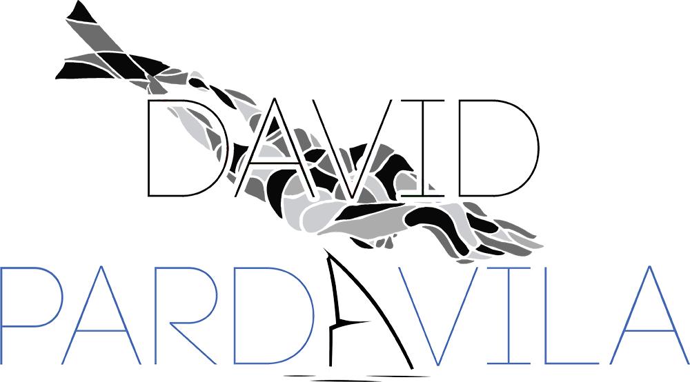 David Pardavila
